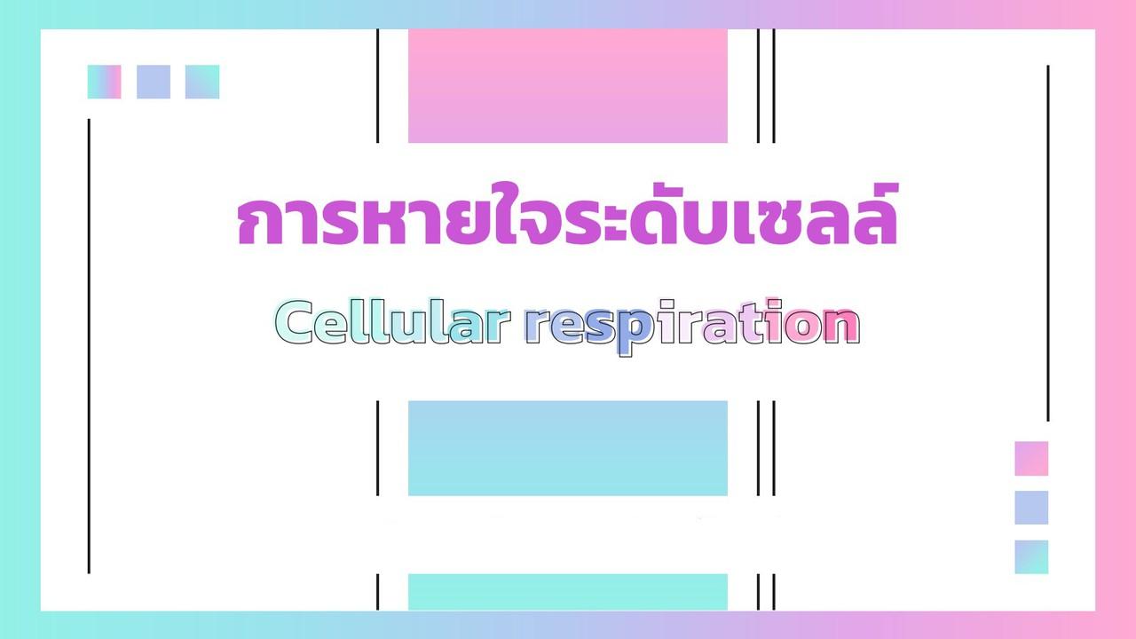 ชีววิทยา : การหายใจระดับเซลล์